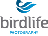 BirdLife Photography