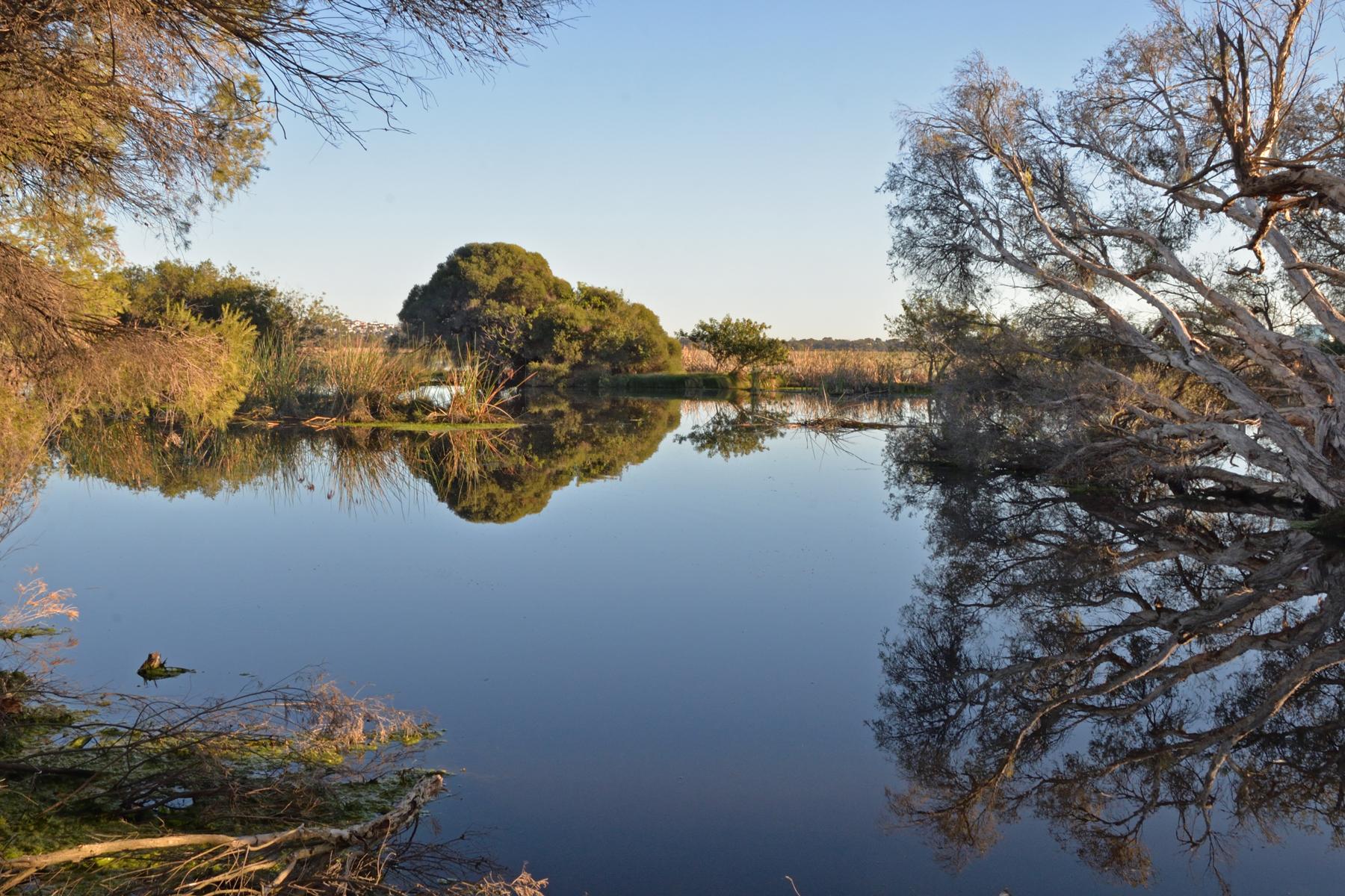 Herdsman Lake, Perth (Image ID 42357)
