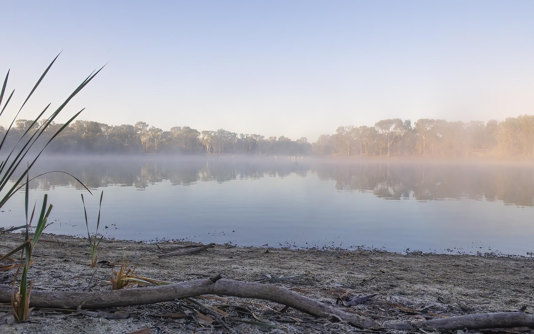Wellard Wetlands (Image ID 46101)