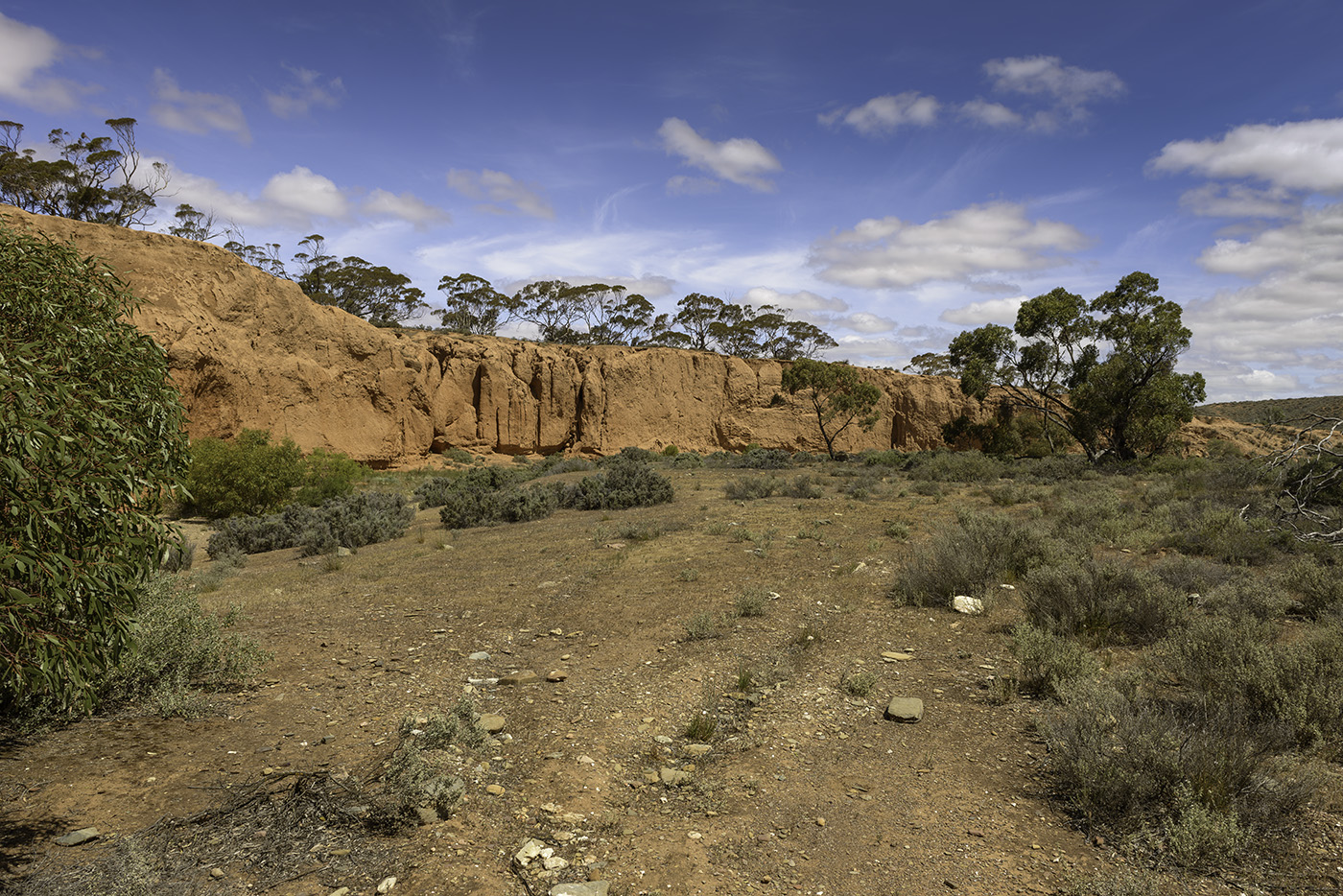 Red Banks Conservation Park near Burra
