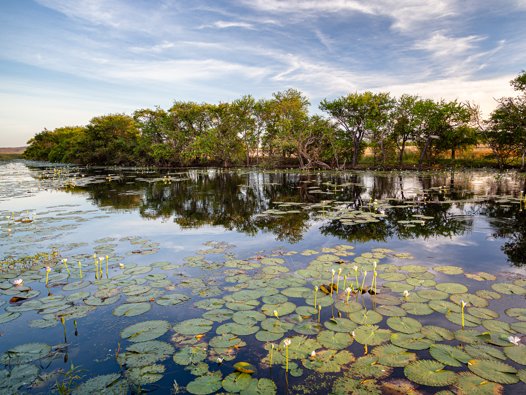 Parry Lagoons (Image ID 36953)