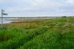 Benger Swamp (Image ID 37188)